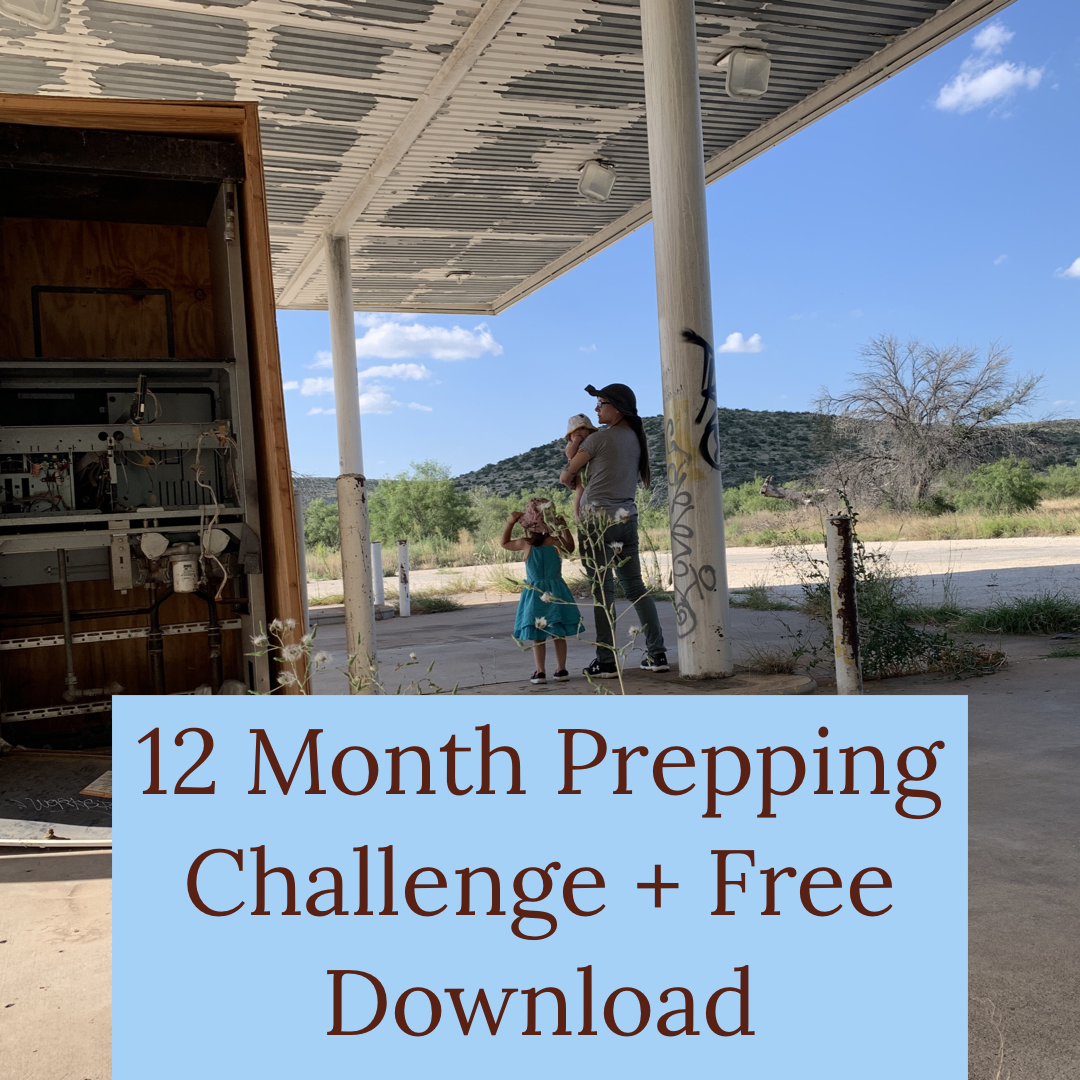 12 month prepping challenge