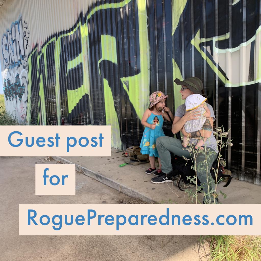 prepper guest post blog